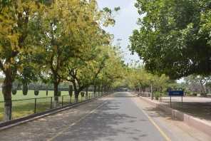 Aitchison's Environment
